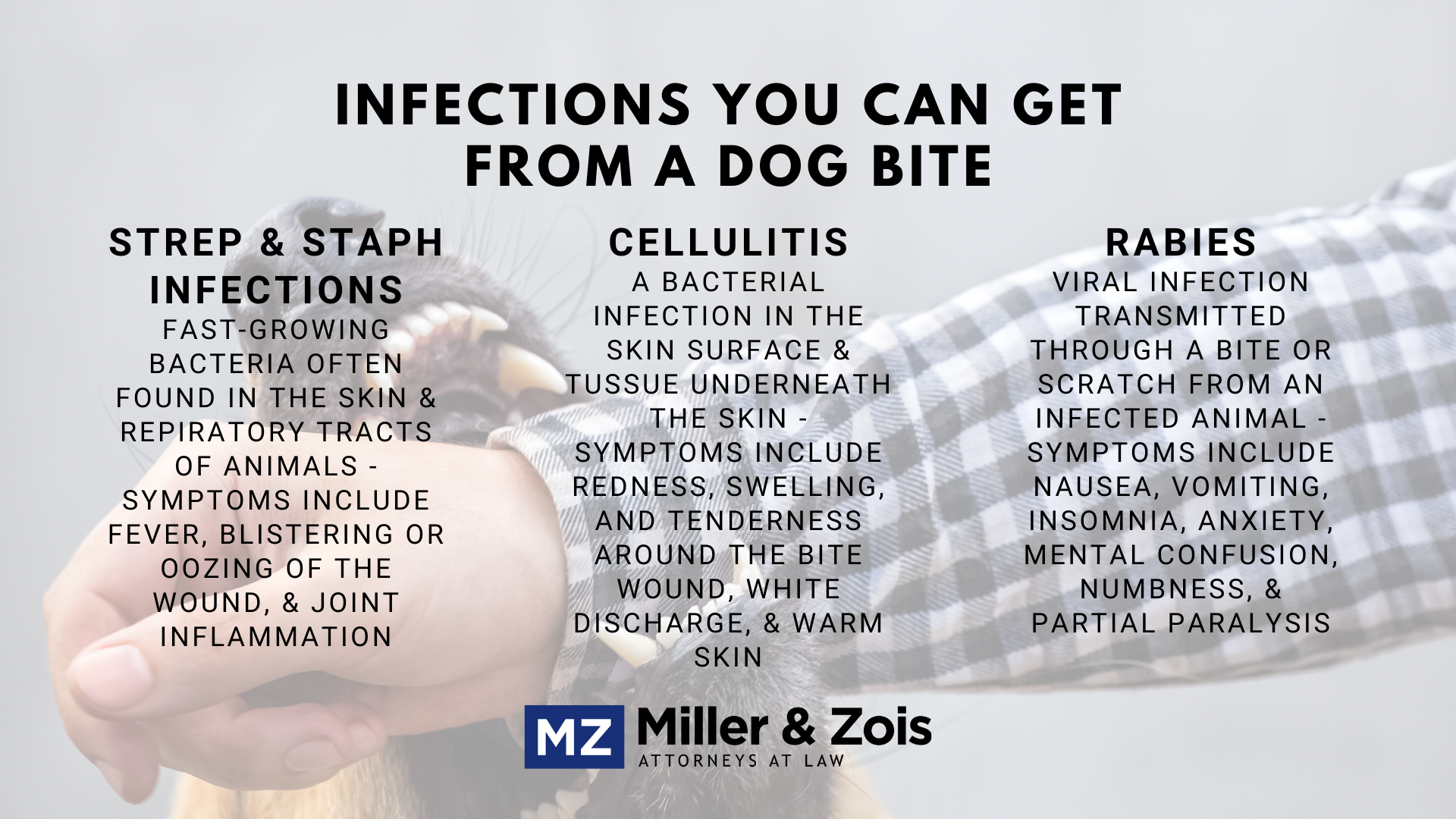 infections-you-can-get-from-a-dog-bite-1